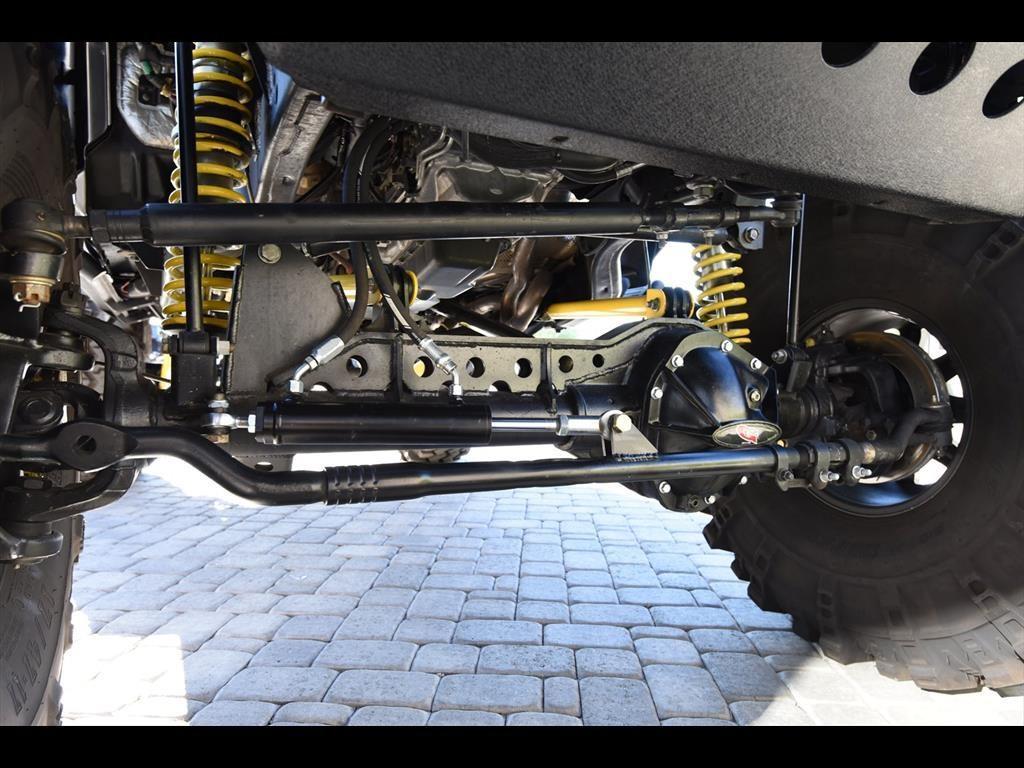 Cat Jeep Wrangler