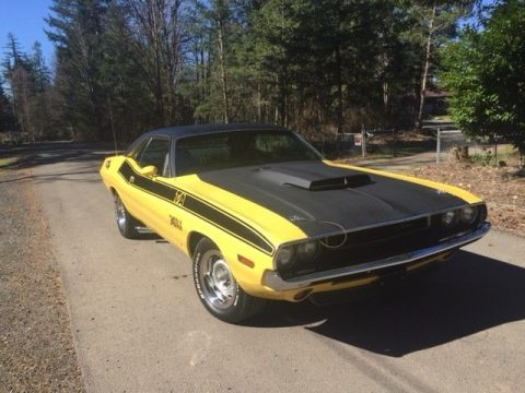 1970 Dodge Challenger T/A Challenger for sale