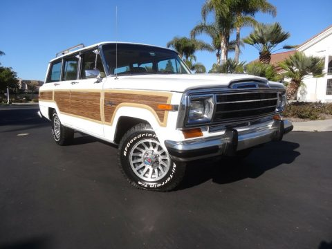 1989 Jeep Grand Wagoneer 5.9 Crate Motor for sale