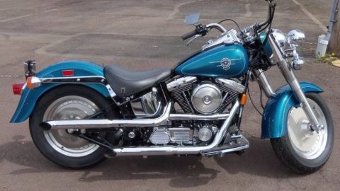 1995 Harley Davidson Softail for sale