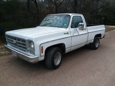 1978 Chevrolet C 10 silverado for sale