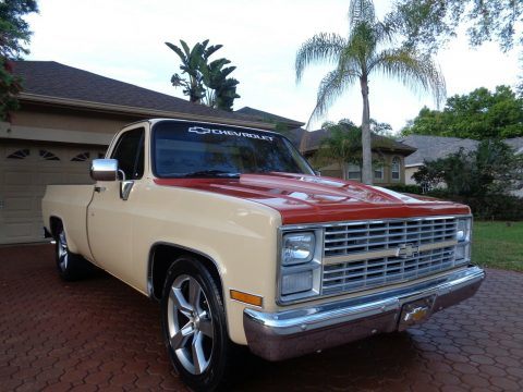 1984 Chevrolet C 10 Custom DELUXE for sale