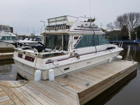 1985 Sea Ray 340 Sedan Bridge for sale